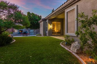 Phoenix Single Family Home UCB (Under Contract-Backups): 35826 N 33rd Lane
