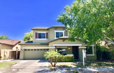 Queen Creek Single Family Home For Sale: 18663 E Lark Drive
