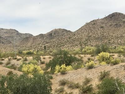 Goodyear Residential Lots & Land For Sale: 9001 S 140th Avenue
