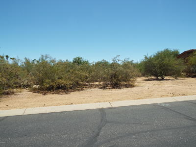 Rio Verde Residential Lots & Land For Sale: 18501 E Picacho Road