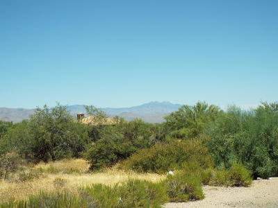 Scottsdale Residential Lots & Land For Sale: 14130 E Rancho Del Oro Court