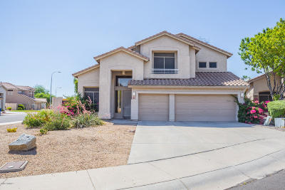 Chandler Single Family Home For Sale: 182 S Forest Court
