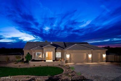 Wittmann Single Family Home For Sale: 28607 N Bush Street