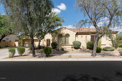 Phoenix Single Family Home For Sale: 1808 W Parnell Drive