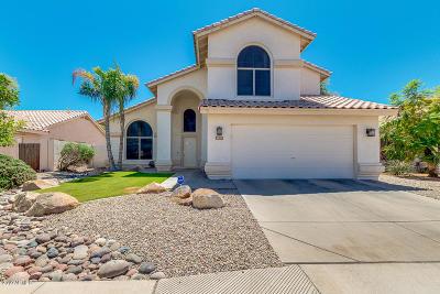 Chandler Single Family Home For Sale: 1621 W Lark Drive