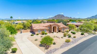 Pinnacle Peak Single Family Home For Sale: 8510 E Santa Catalina Drive