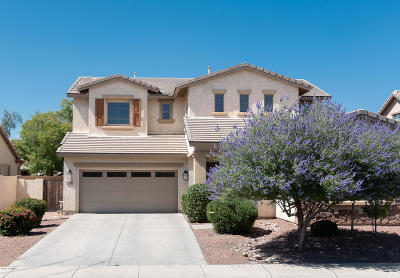 Chandler Single Family Home For Sale: 3964 E Grand Canyon Place