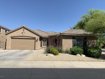 Chandler Single Family Home For Sale: 3041 S Kimberlee Court