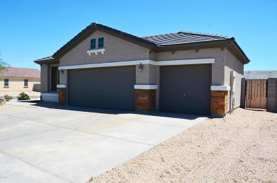 Avondale Single Family Home For Sale: 12005 W Rio Vista Lane