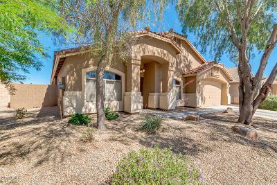 Maricopa Single Family Home For Sale: 22157 N Van Loo Drive