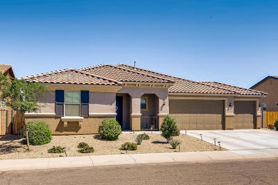 Maricopa Single Family Home For Sale: 40574 W Pryor Lane