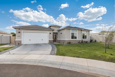 Phoenix Single Family Home For Sale: 4214 E Carol Ann Lane