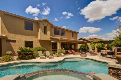 Phoenix Single Family Home For Sale: 40603 N Copper Basin Trail