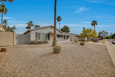 Tempe Single Family Home For Sale: 31 E Duke Drive