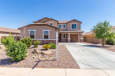 San Tan Valley Single Family Home For Sale: 881 W Desert Valley Drive