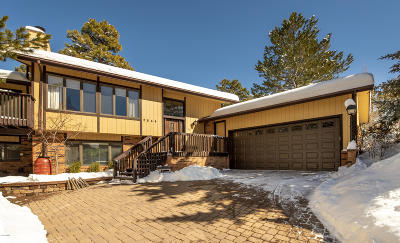 Flagstaff Single Family Home For Sale: 2544 N Rio De Flag Drive