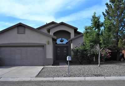 Douglas  Single Family Home For Sale: 2717 E 7th Street