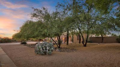 North Phoenix Single Family Home For Sale: 4220 E Sandra Terrace