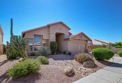 Cave Creek Single Family Home For Sale: 29456 N 49th Way