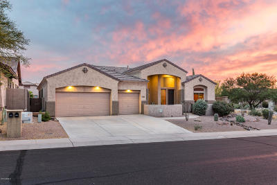 Gold Canyon Single Family Home For Sale: 4298 S Tecoma Trail