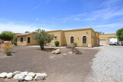 Waddell Single Family Home For Sale: 17412 W Ocotillo Road