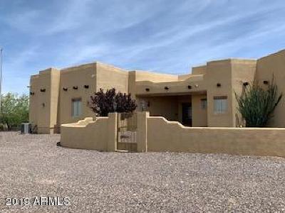 Douglas  Single Family Home For Sale: 3463 Geronimo Trail E