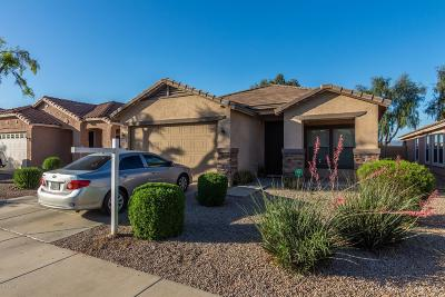 Queen Creek Single Family Home For Sale: 22170 E Via Del Palo