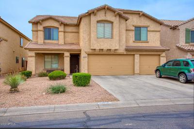 Maricopa Single Family Home For Sale: 43701 W Cowpath Road