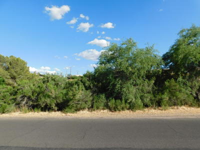 Gold Canyon Residential Lots & Land For Sale: 1175 E Queen Valley Drive