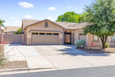 Queen Creek Single Family Home For Sale: 18481 E Pine Valley Drive