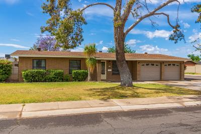 Tempe Single Family Home For Sale: 1205 E Valerie Drive