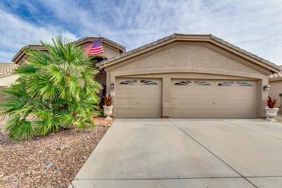 Single Family Home For Sale: 515 W Villa Rita Drive