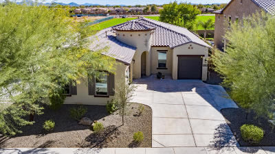 Chandler Single Family Home For Sale: 3893 E San Carlos Place