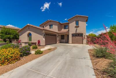 Chandler Single Family Home For Sale: 692 W San Carlos Way