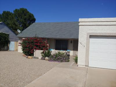 Phoenix Single Family Home For Sale: 19413 N 8th Street