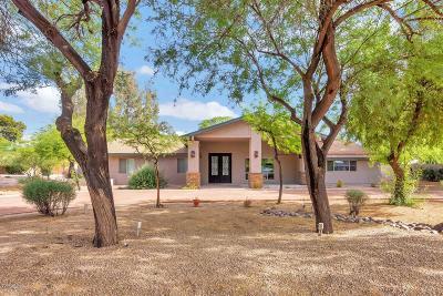 Scottsdale Single Family Home For Sale: 6202 E Mescal Street