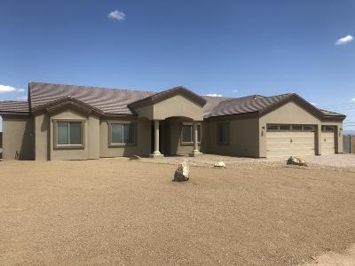 San Tan Valley Single Family Home For Sale: 1116 W Stellar Place