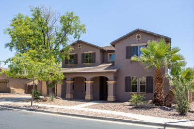 Surprise Single Family Home For Sale: 14339 W Desert Hills Drive