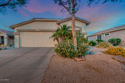 Single Family Home For Sale: 5023 S Lantana Lane