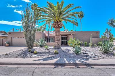 Scottsdale Single Family Home For Sale: 6119 E Sandra Terrace