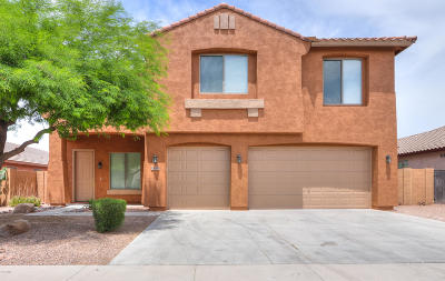 Maricopa Single Family Home For Sale: 45694 W Ranch Road