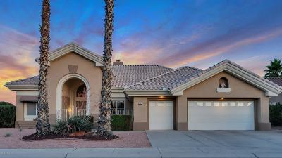 Sun City Single Family Home UCB (Under Contract-Backups): 19631 N White Rock Drive