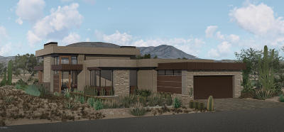 Maricopa County Single Family Home For Sale: 37200 N Cave Creek Road #1019
