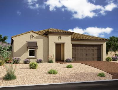 Mesa Single Family Home For Sale: 10218 E Supernova Drive