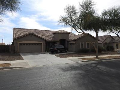 Queen Creek Single Family Home For Sale: 21951 E Domingo Road