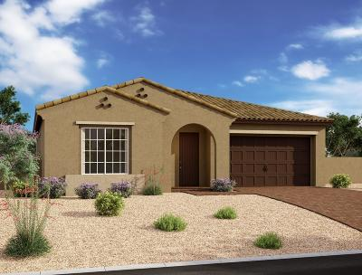 Mesa Single Family Home For Sale: 10206 E Supernova Drive