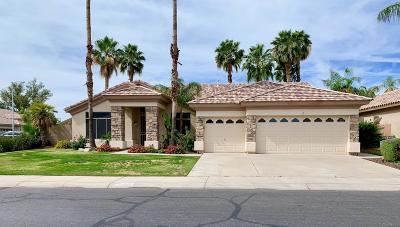 Chandler Single Family Home For Sale: 1283 W Indigo Drive