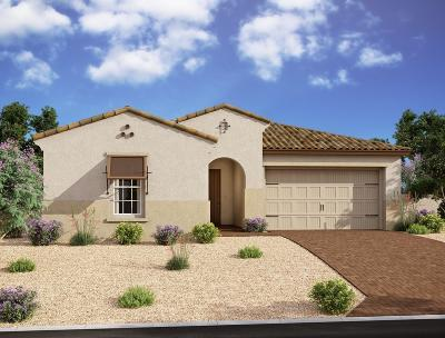 Mesa Single Family Home For Sale: 10162 E Supernova Drive