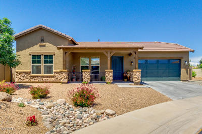 Gilbert Single Family Home For Sale: 3772 E Turnberry Court