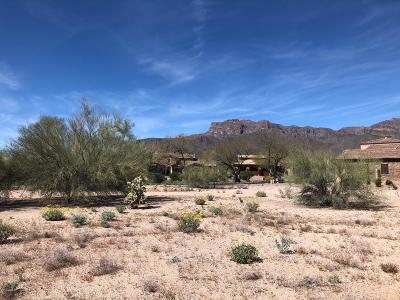 Gold Canyon Residential Lots & Land For Sale: 8301 E Sunset View Drive